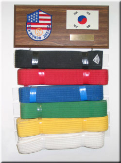 taekwondo america belt display